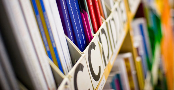Top Schools for A Psychology Degree