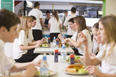 What is a Free and Reduced Lunch Program and How do You Apply?